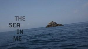 title on the black sea